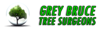 Tree Services in Owen Sound - Logo